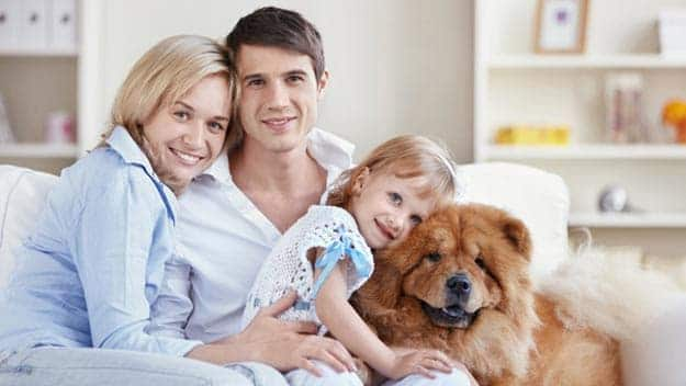 Wills & Trusts dog-young-family Direct Wills Worcestershire